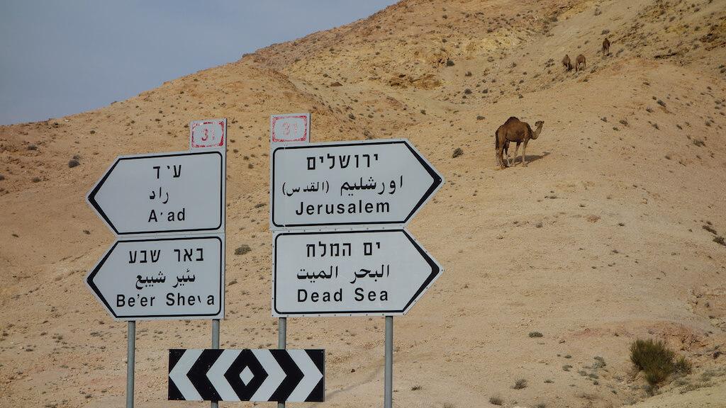 יכיוונים במדבר