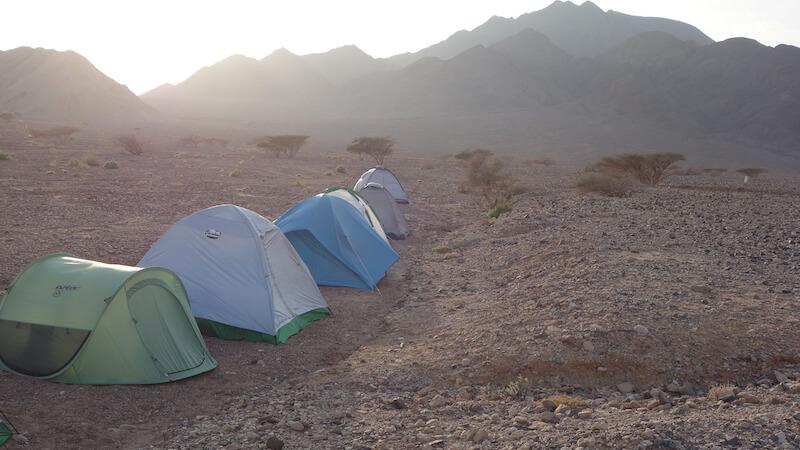 אוהלים בערבה